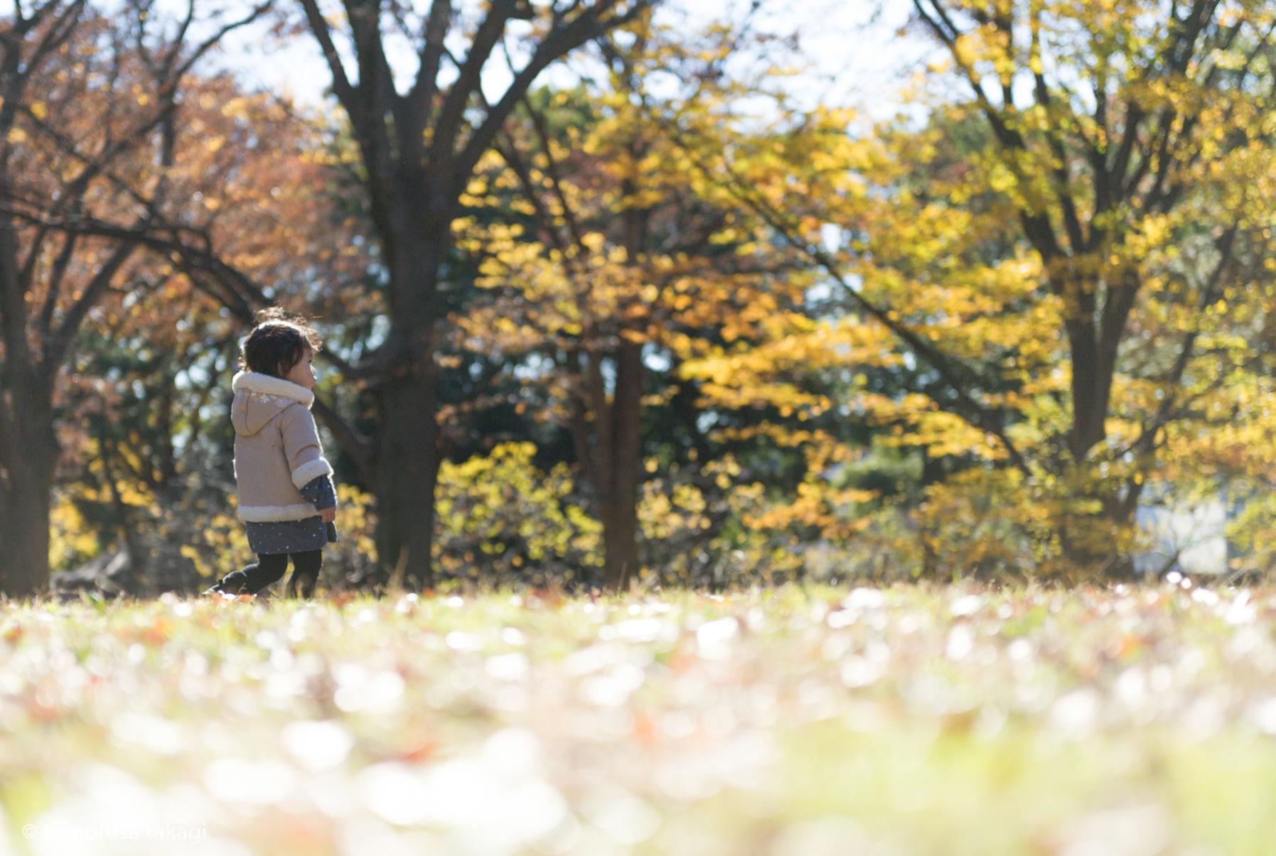 ファミリー撮影会★ロケーション★代々木公園