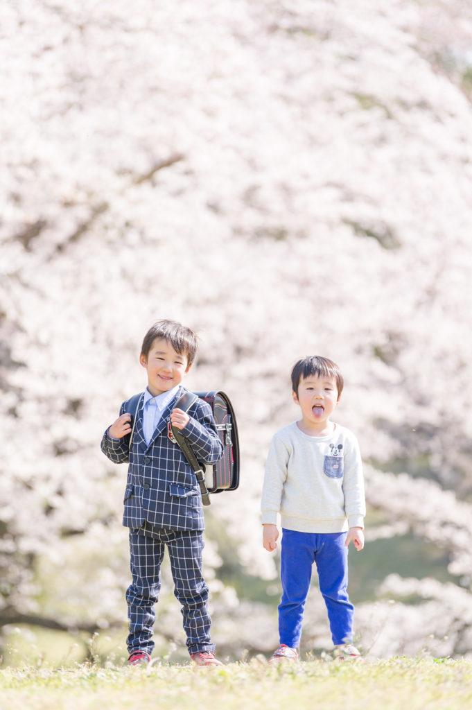 桜の撮影について